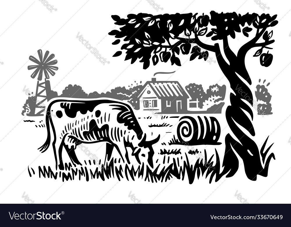 Cow on background rustic landscape