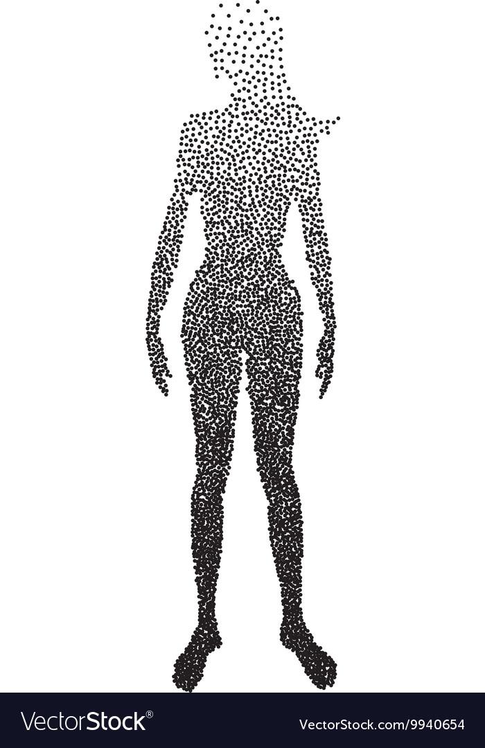 Halftone body female Anatomy designed using Vector Image