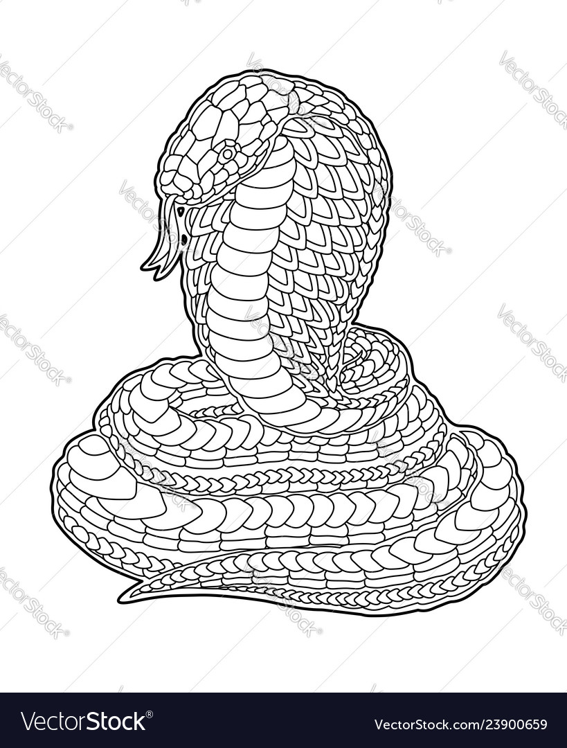 Coloring Book Page With Decorative Cartoon Cobra Vector Image