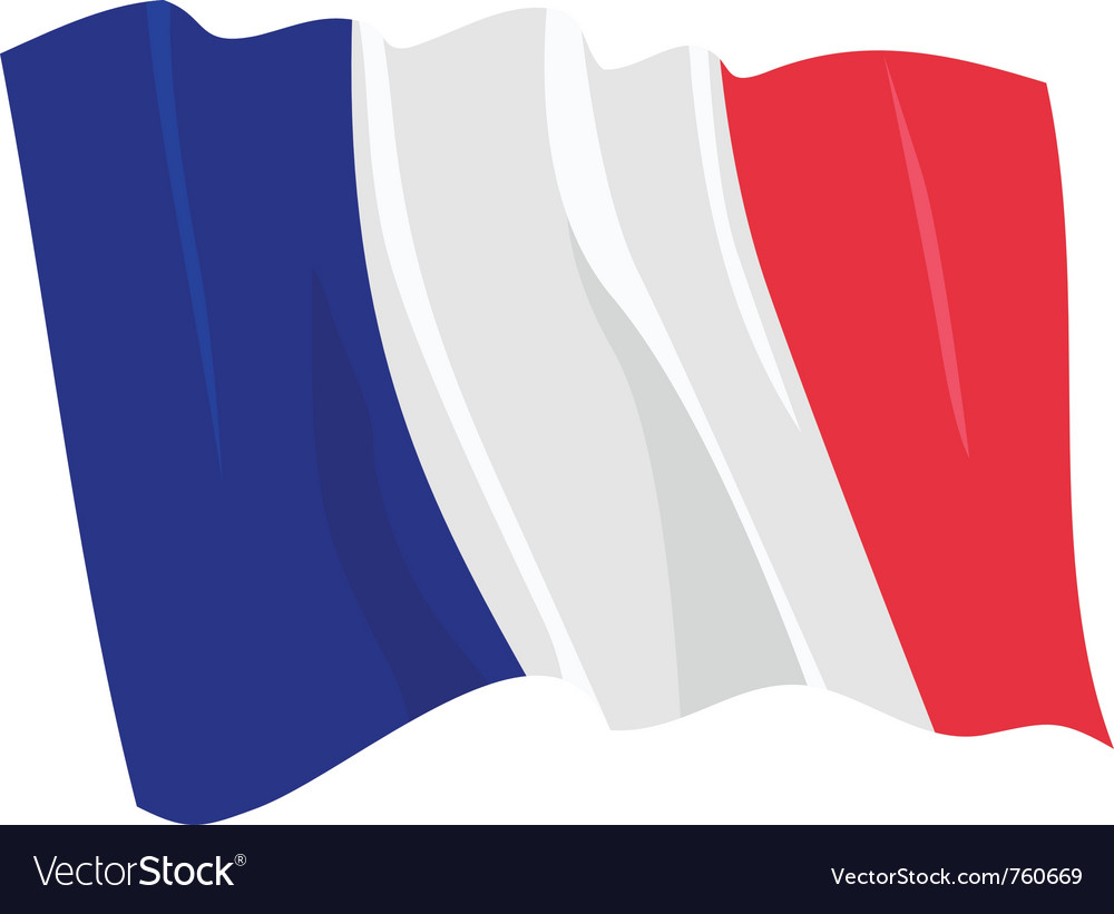 Political waving flag of france vector image