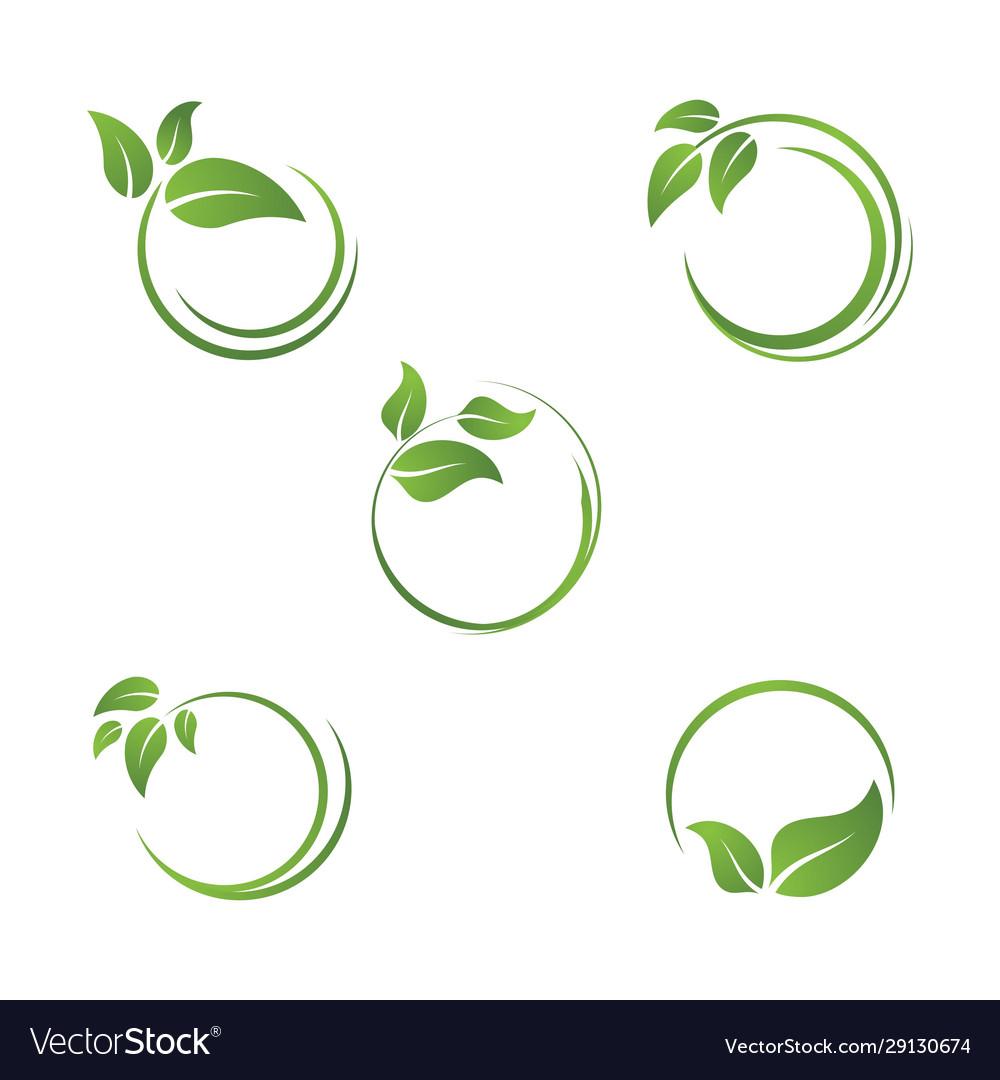 Bio leaf icon design