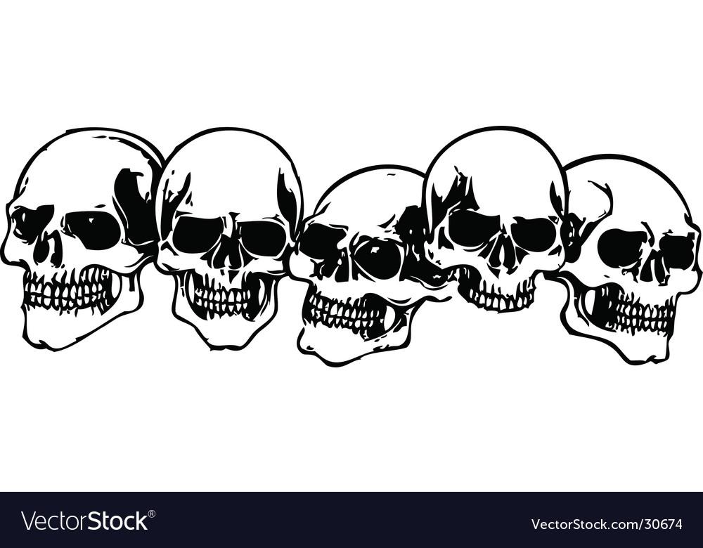 Skulls illustration vector image
