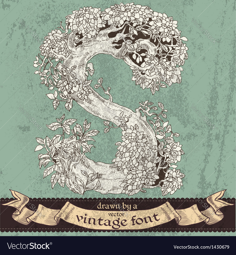 Magic grunge forest hand drawn by vintage font - S