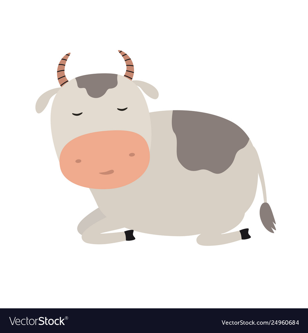 A funny cow is asleep