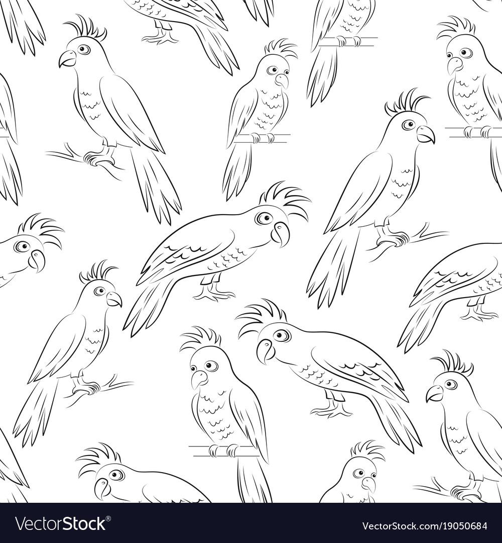 Parrots contours seamless