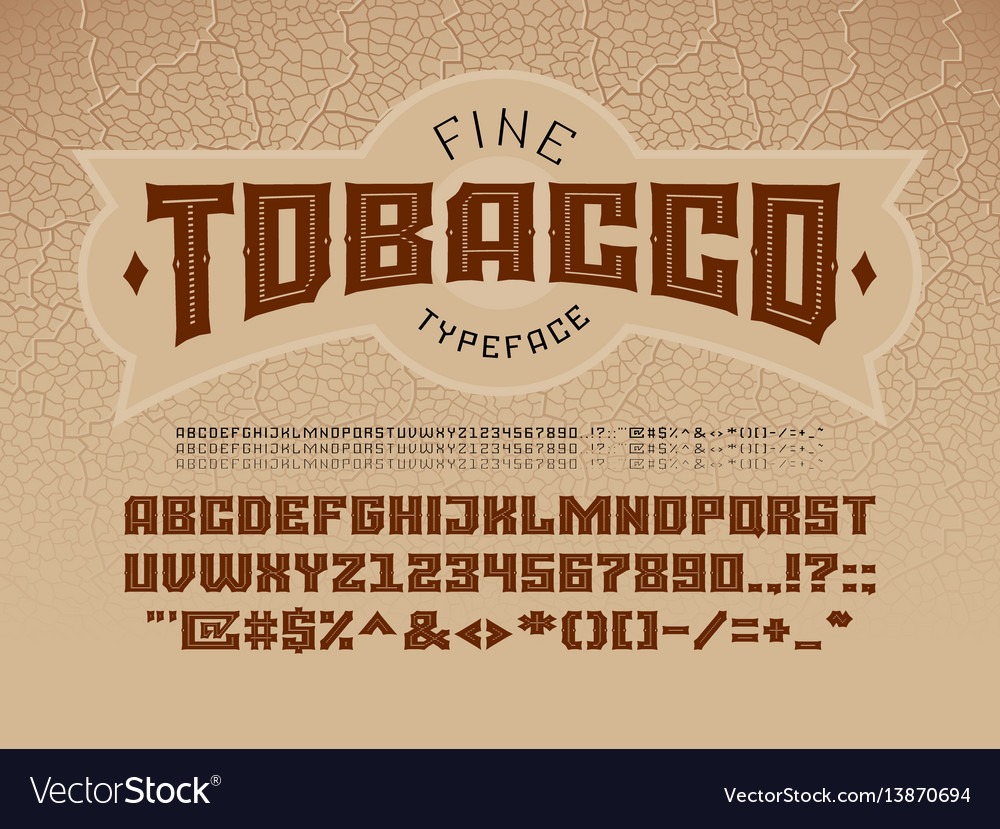 Decorative vintage font on the background of the vector image