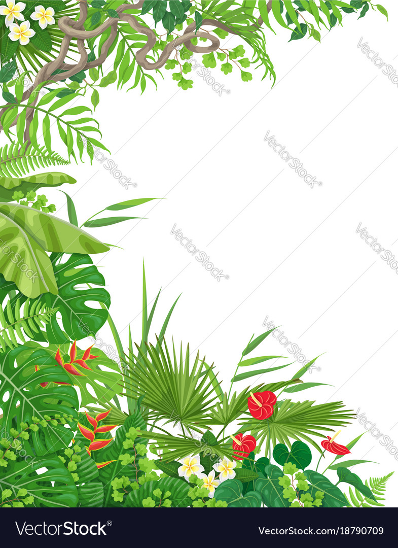 Side border with tropical plants