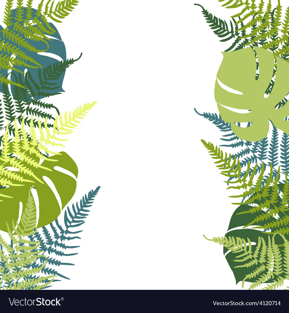 Fern and monstera background