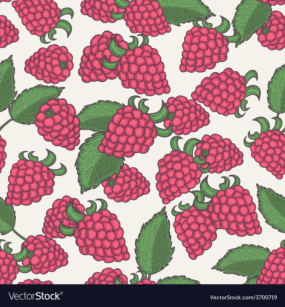 Hand drawn raspberry seamless pattern