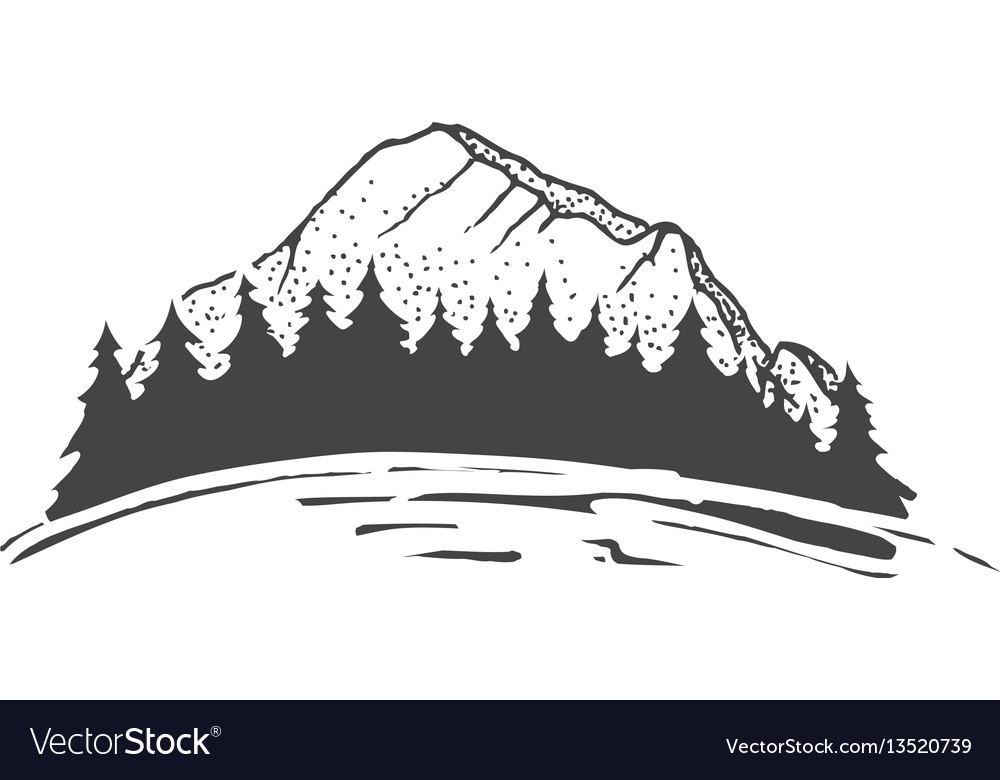 Sketch of a mountains with fir forest engraving
