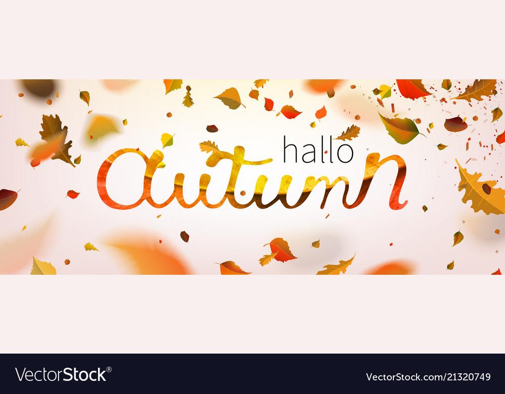 Stock hallo autumn falling
