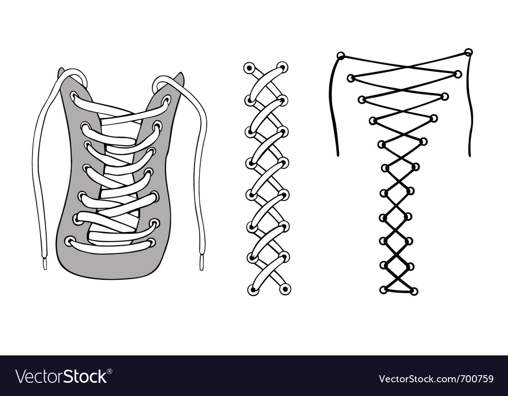 Laces vector image