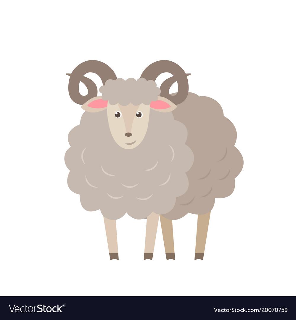 Sheep flat isolated on white