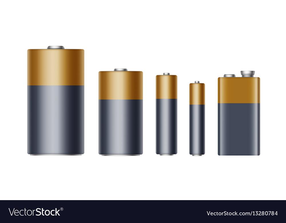 Set of alkaline batteries of diffrent size aaa aa vector image
