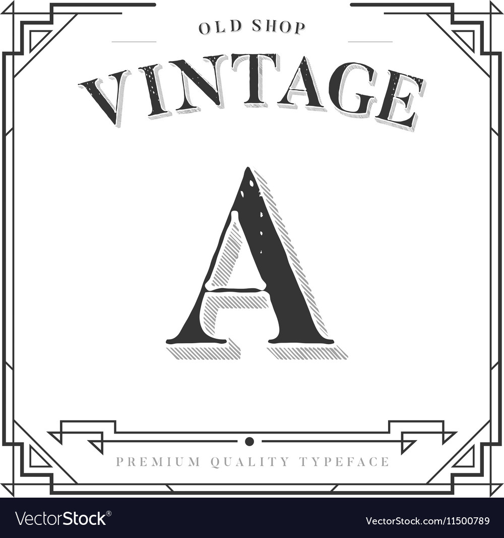 alphabet font letter with classy stylish frame vector image