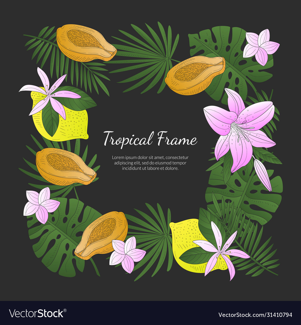 Tropical frame banner template with bright exotic