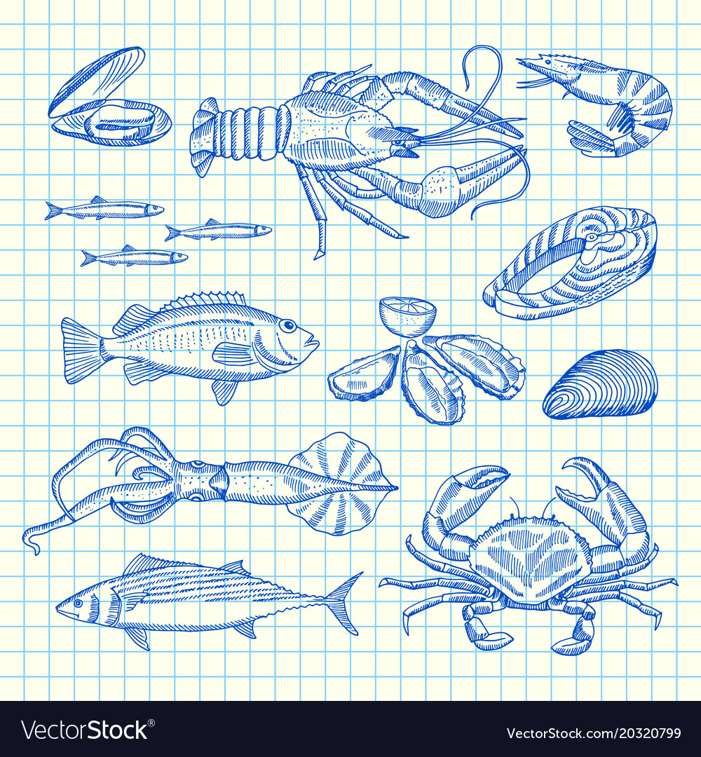 Hand drawn seafood elements set