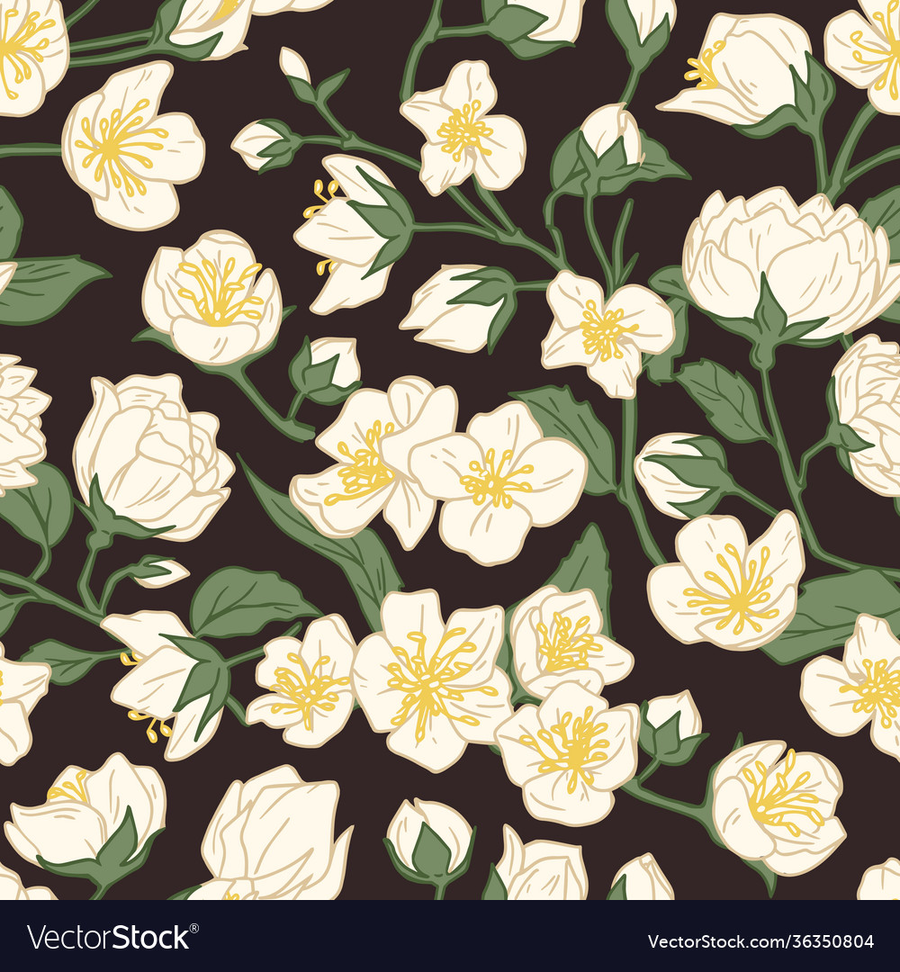 Seamless pattern blossomed jasmine flowers on