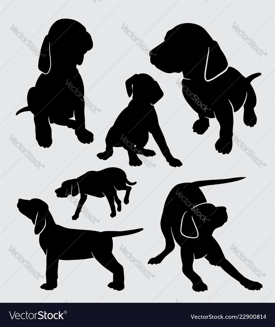 Dog vizsla pet mammal animal silhouette