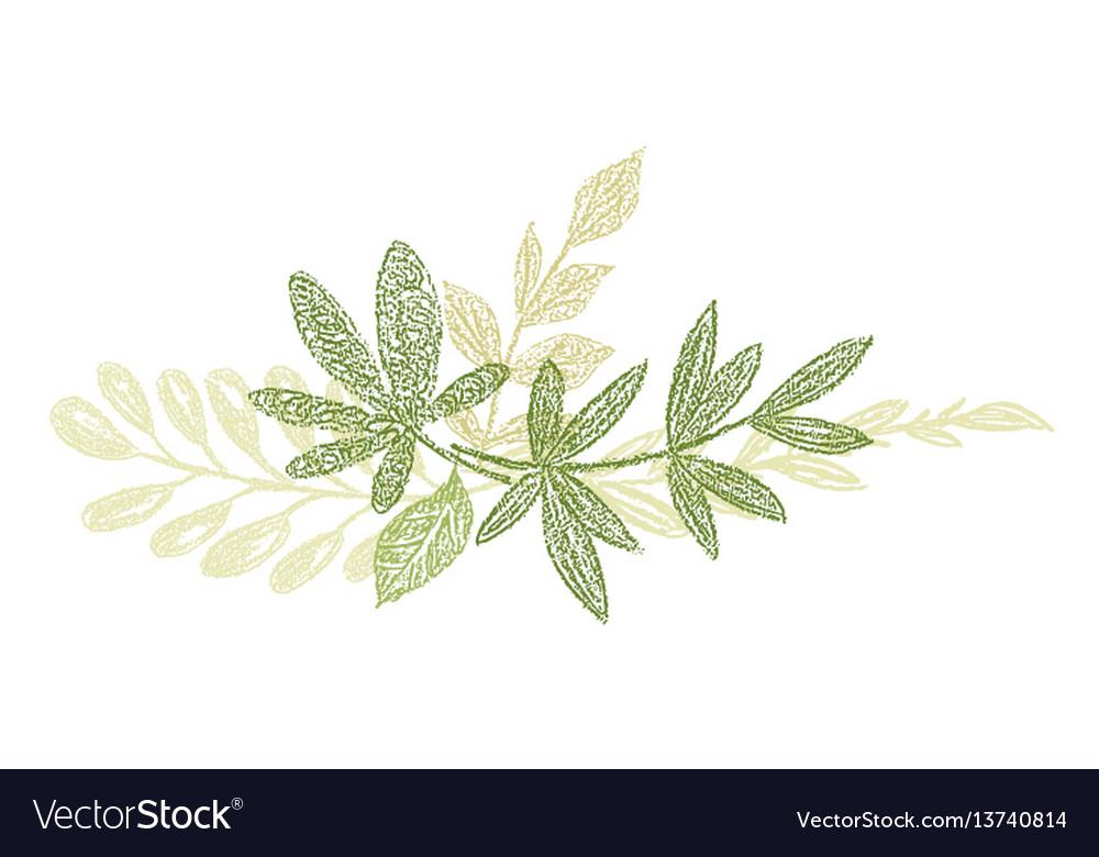 Green botanical hand drawn leaf composition