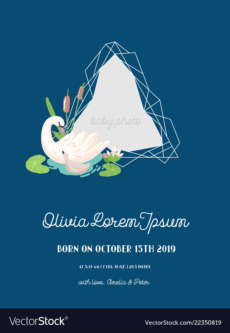 Baby announcement with swan invitation card