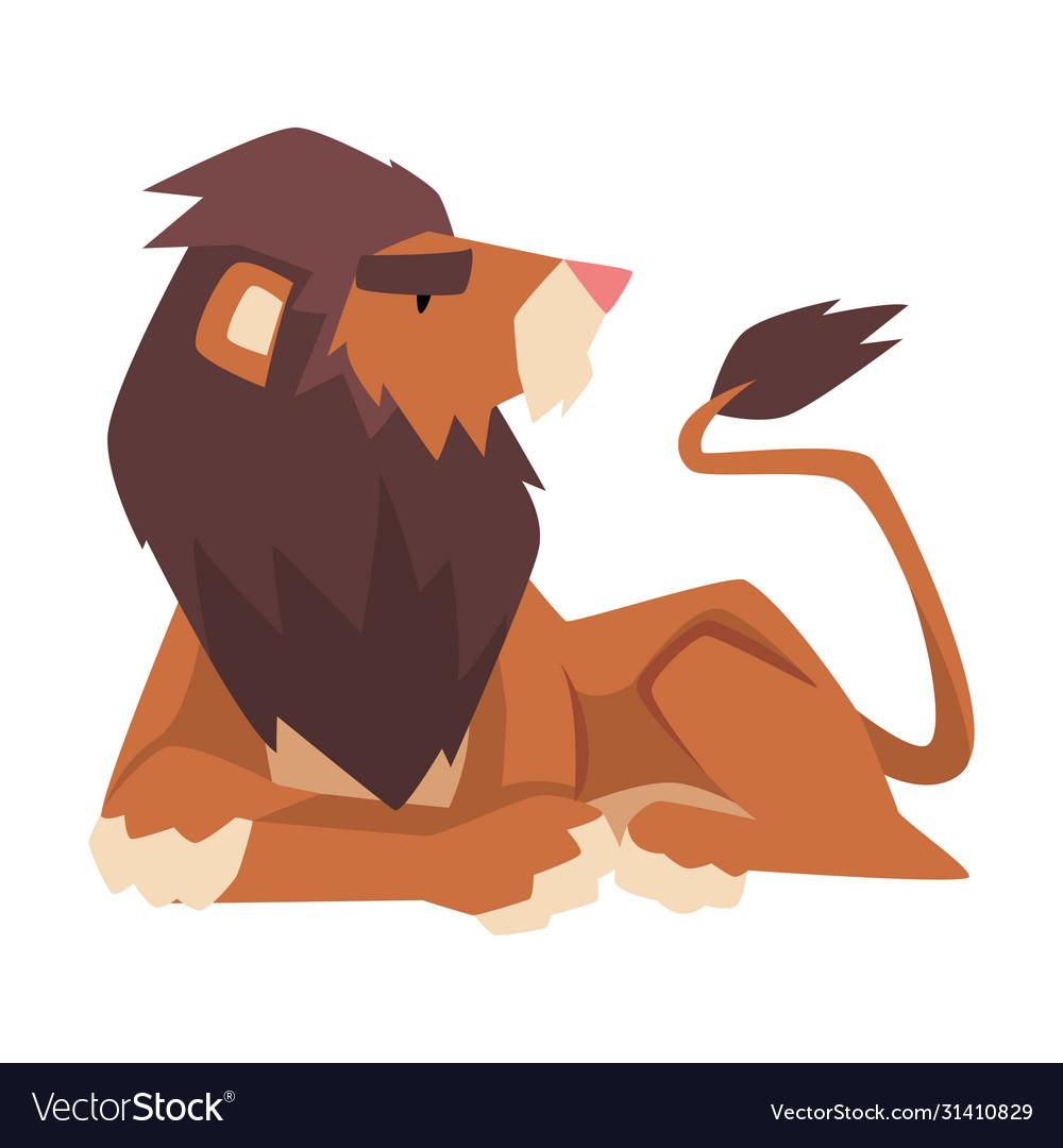 Lying powerful lion mammal jungle animal