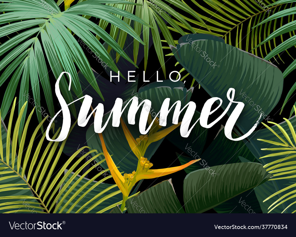 Summer tropical design with exotic dark