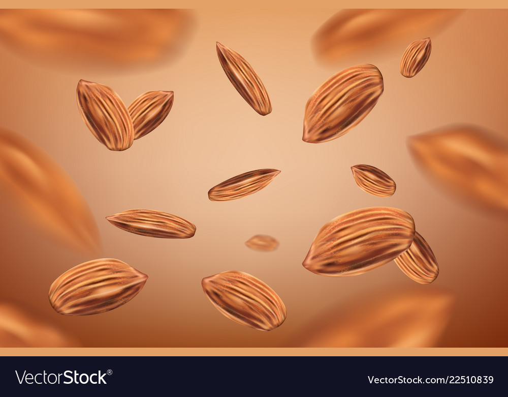 Realistic flying almonds background template with