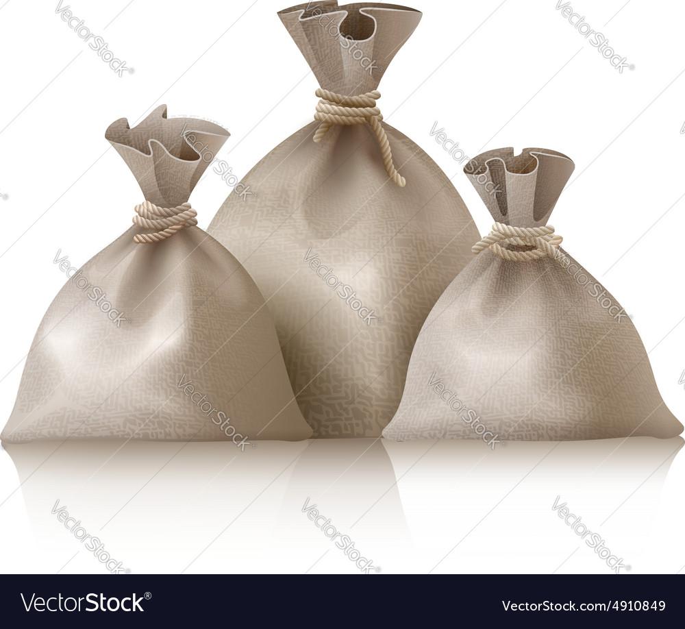 Three full sacks vector image