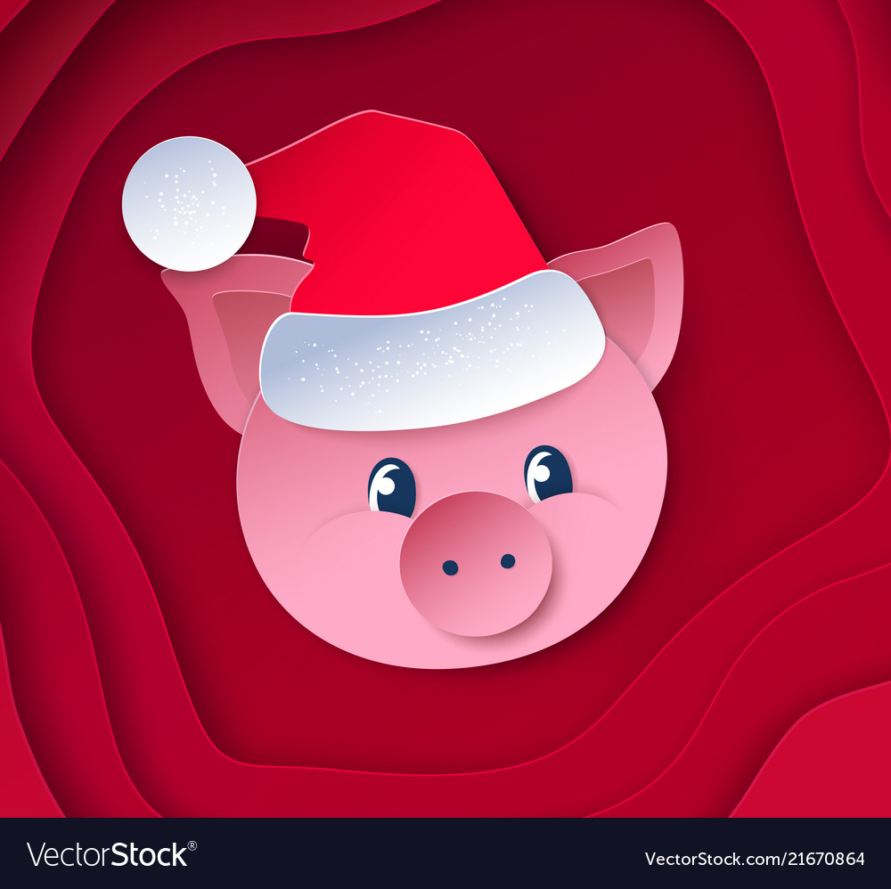 Cute funny new year pig
