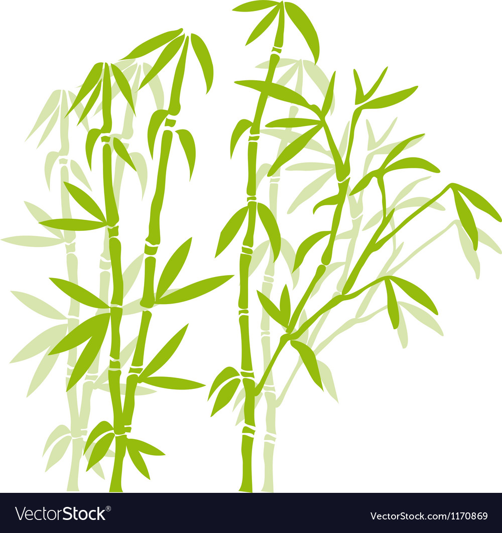 Green Bamboo Trees Royalty Free Vector Image Vectorstock