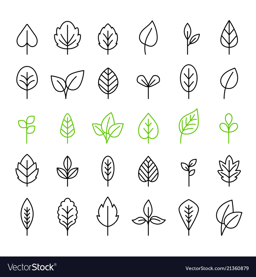 Outline leaves isolated icon set