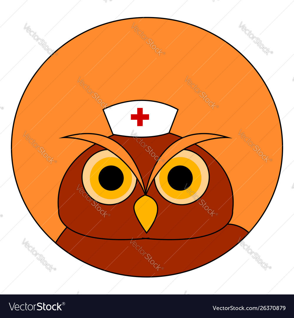 Owl with medical hat on white background