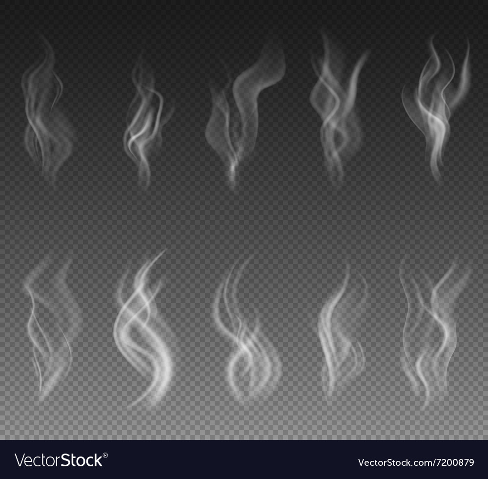 Smoke set on transparent background vector image