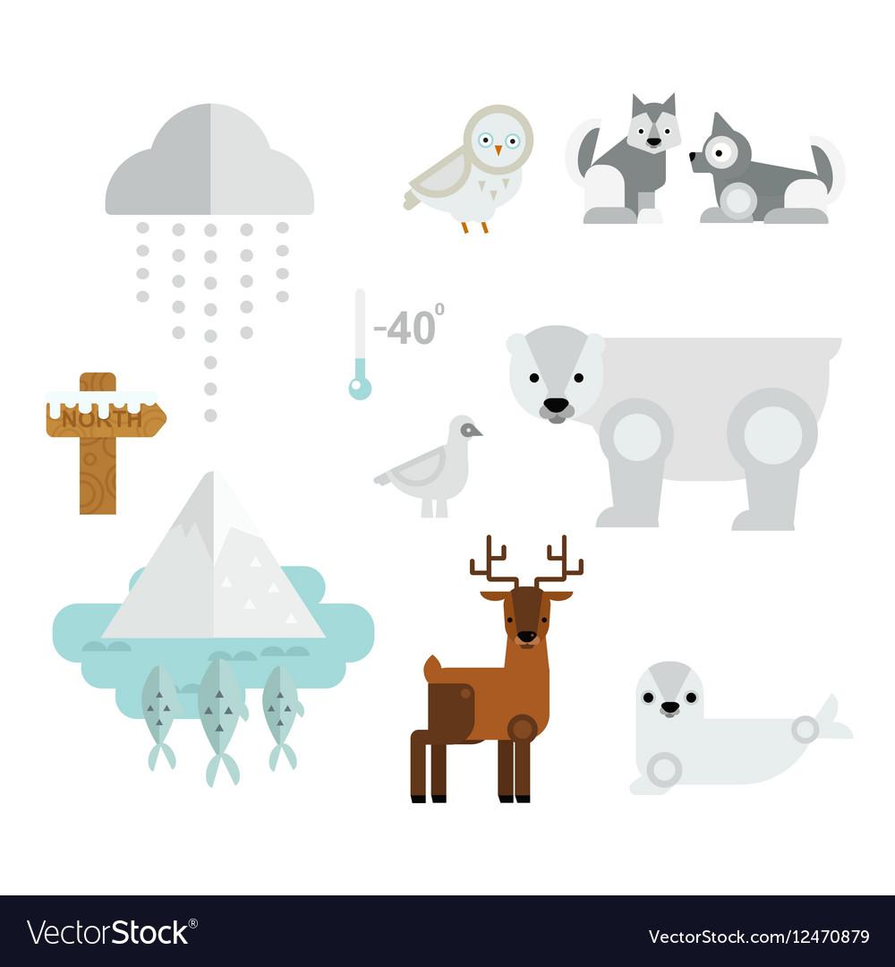 Wild North Arctic Animals Symbols Royalty Free Vector Image