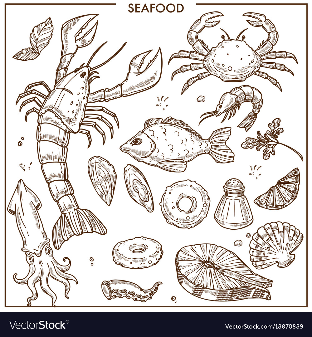 Seafood and fresh fish sketch icons set for