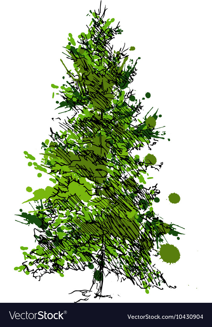 Colored Hand drawing pine vector image