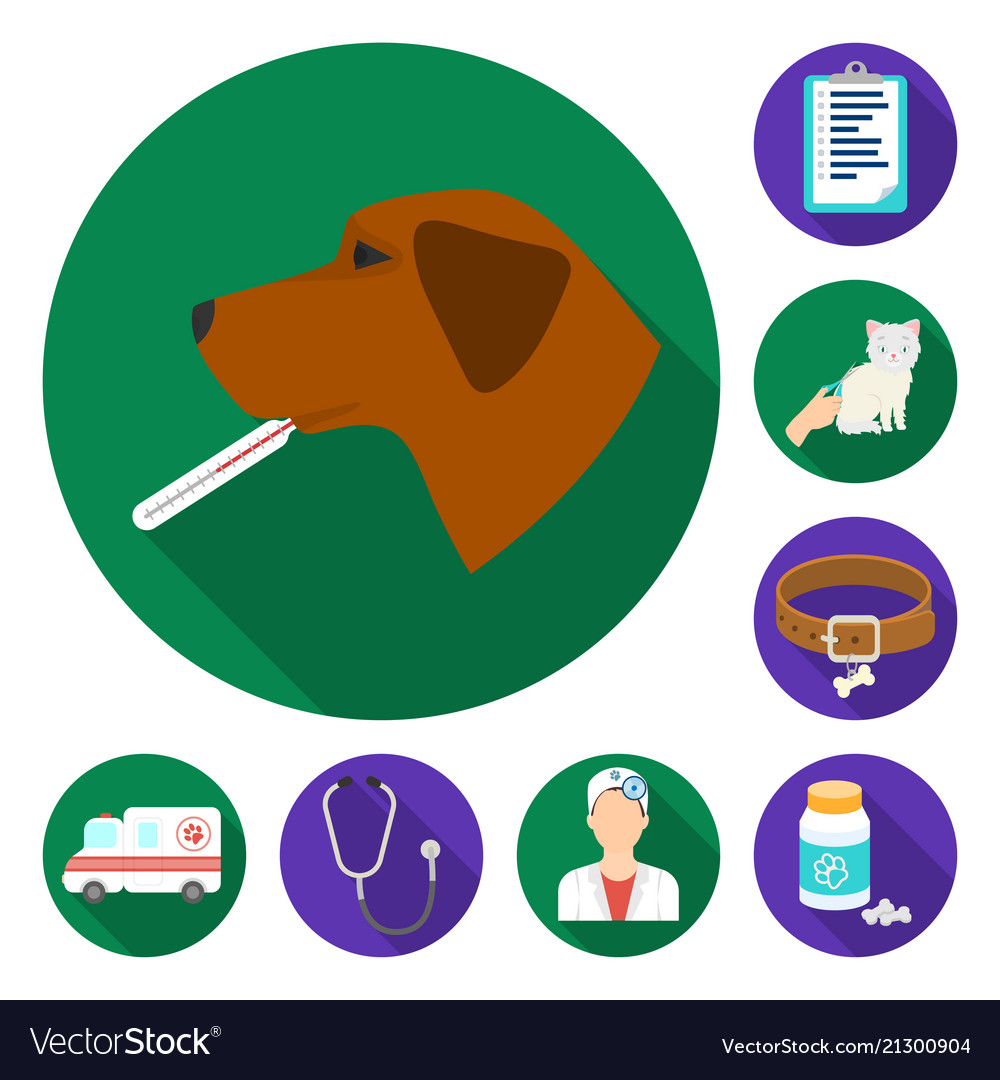 Veterinary clinic flat icons in set collection for