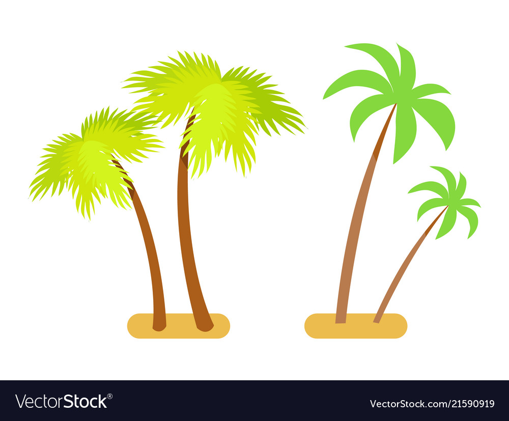 Palms collection green set