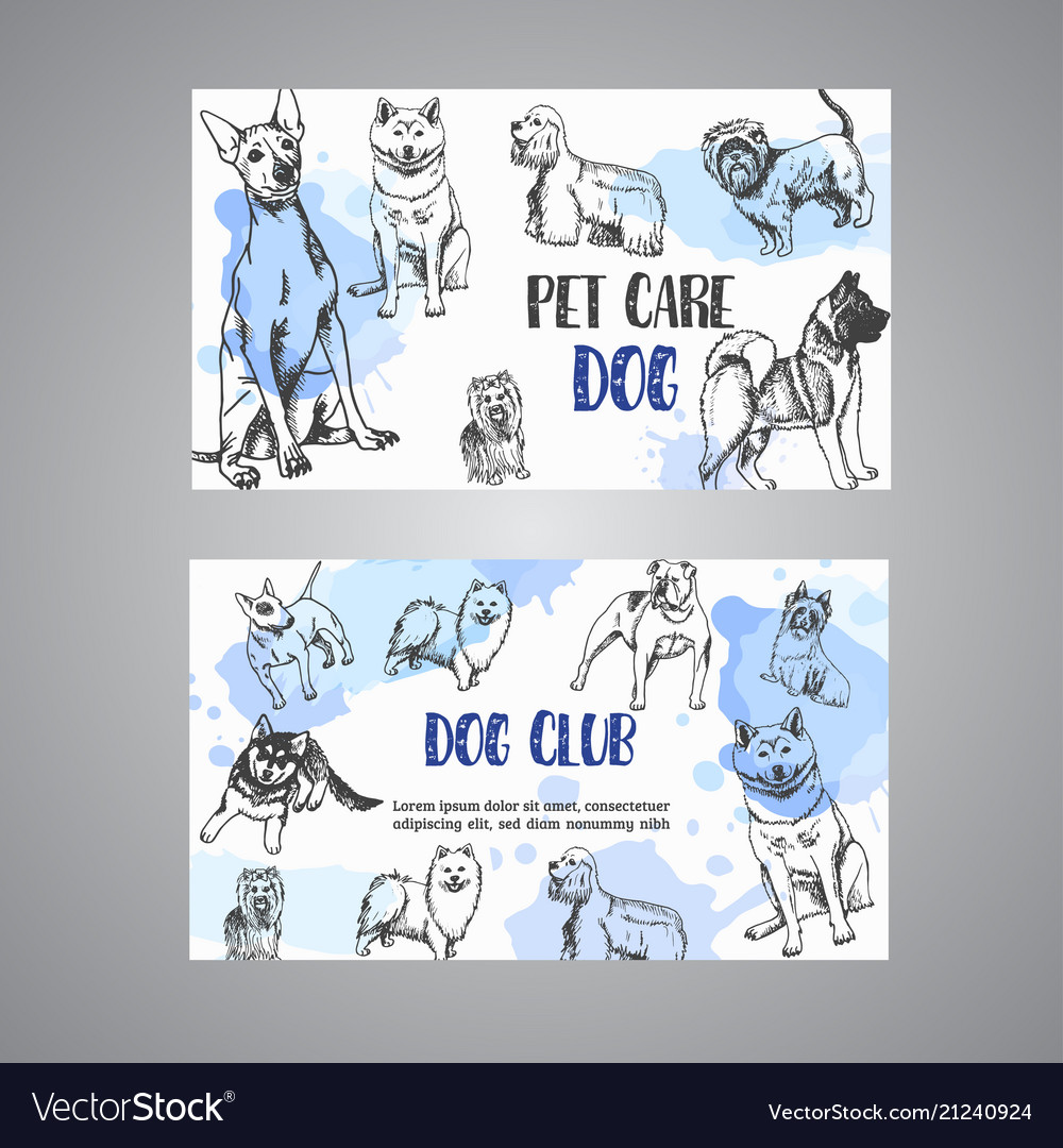 Hand Drawn Dogs Breeds Pet Care