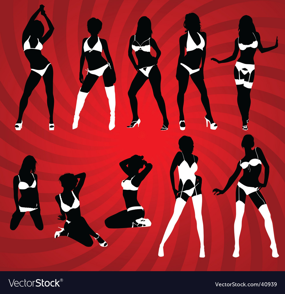 Sexy lingerie vector image