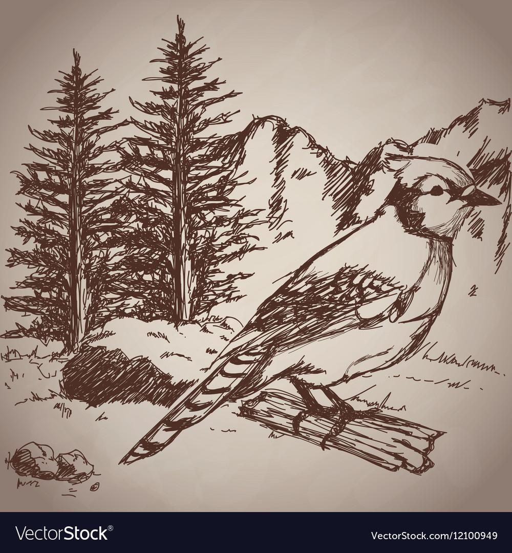 Hand drawing bird landscape vintage