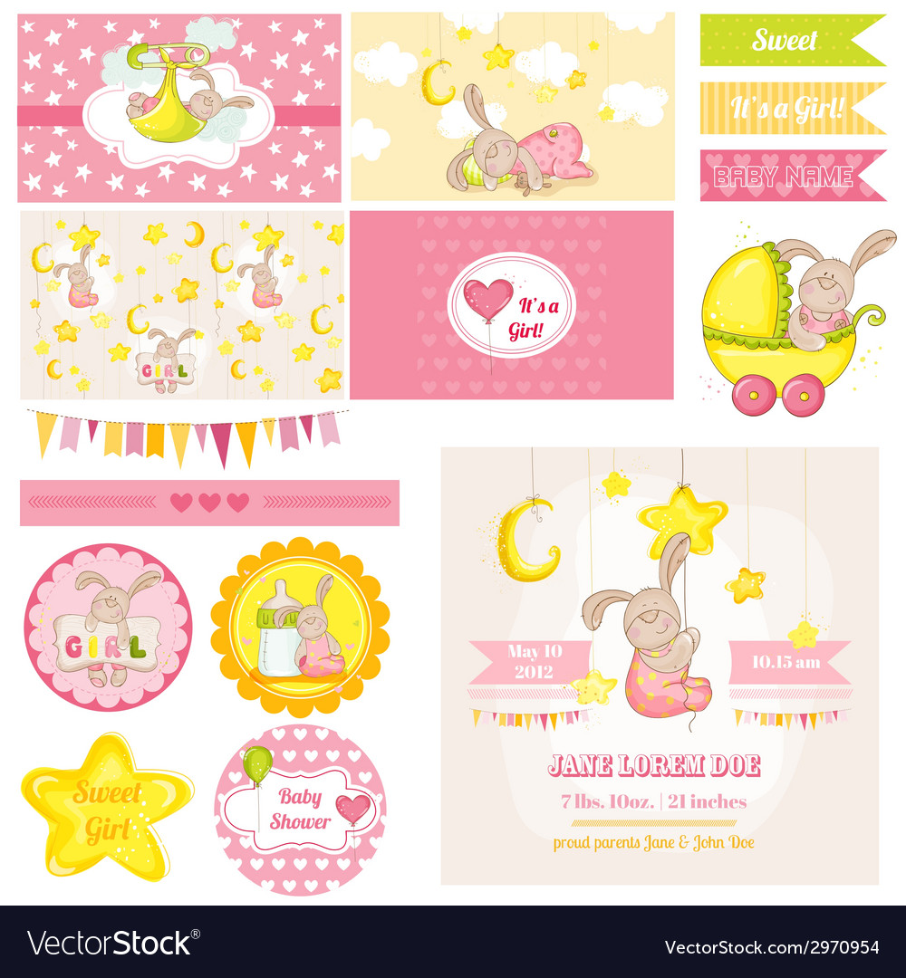 Baby Shower Bunny Theme vector image