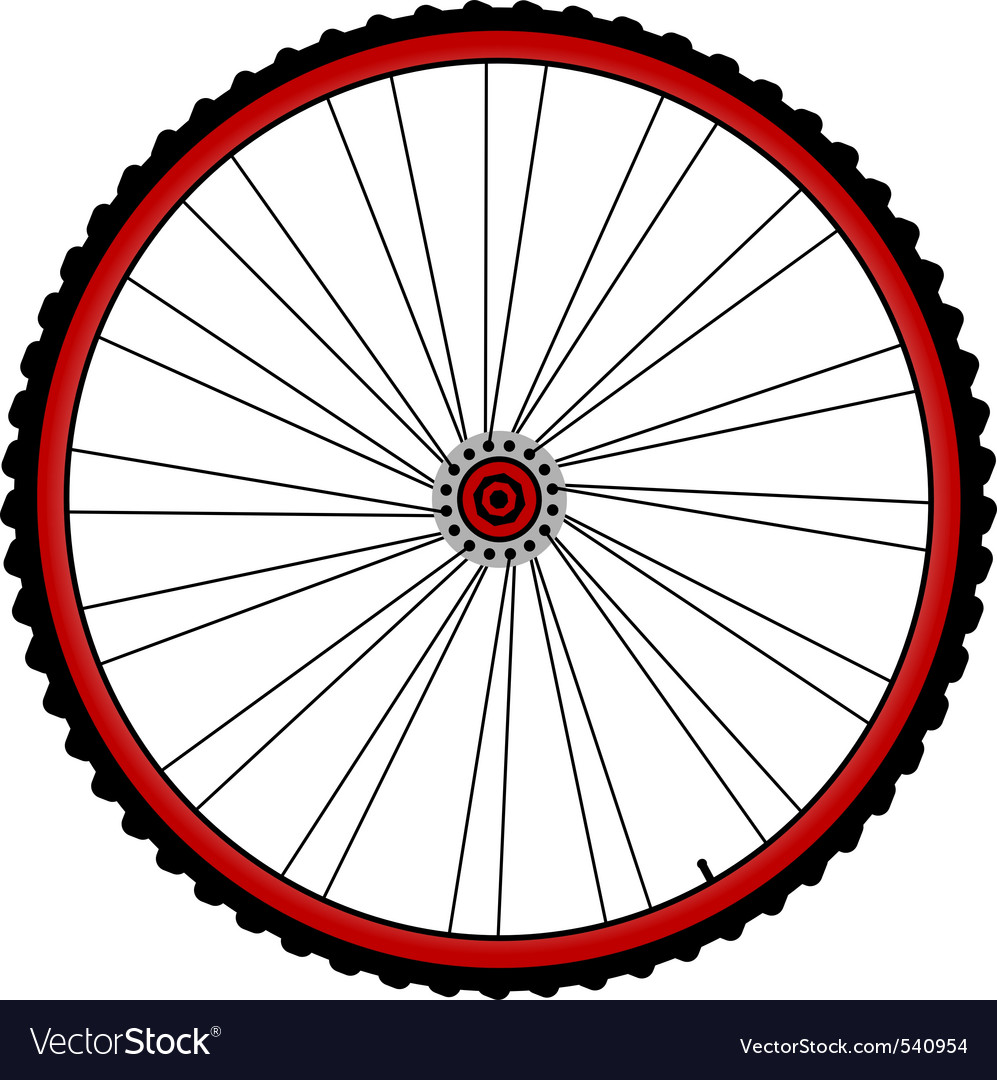 Bicycle wheels vector image