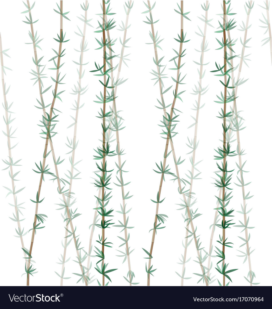 Bamboo plant leaves pattern-01