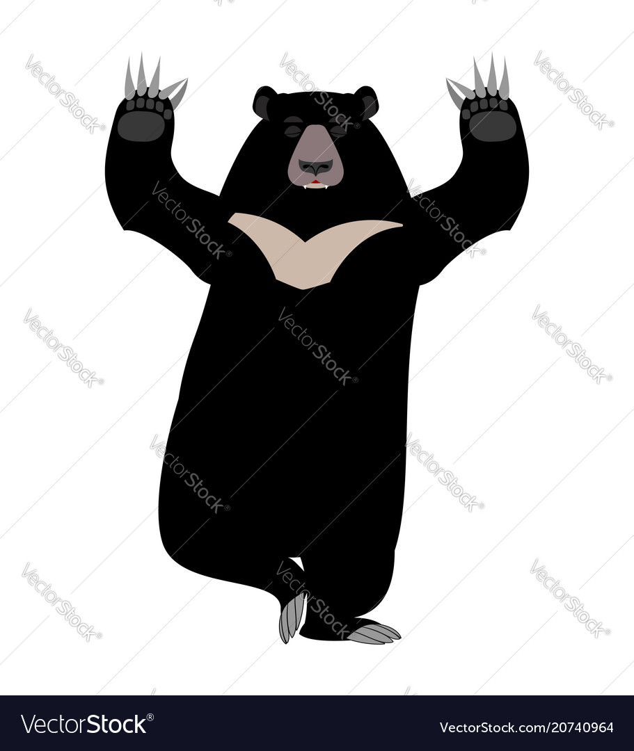 Himalayan bear yoga yogi wild animal emoji black vector image