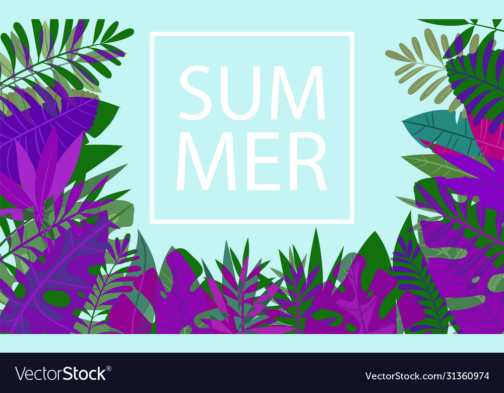 Slogan summer in a trendy frame above tropic