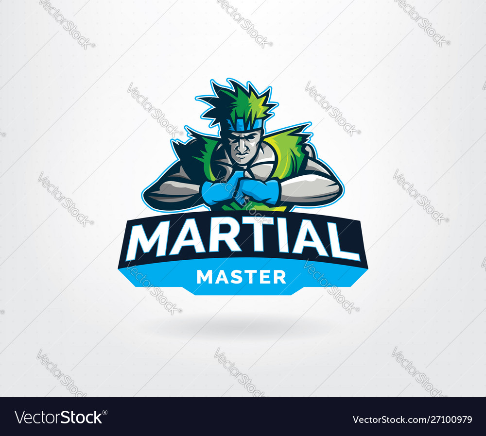 Martial art master sport logo template