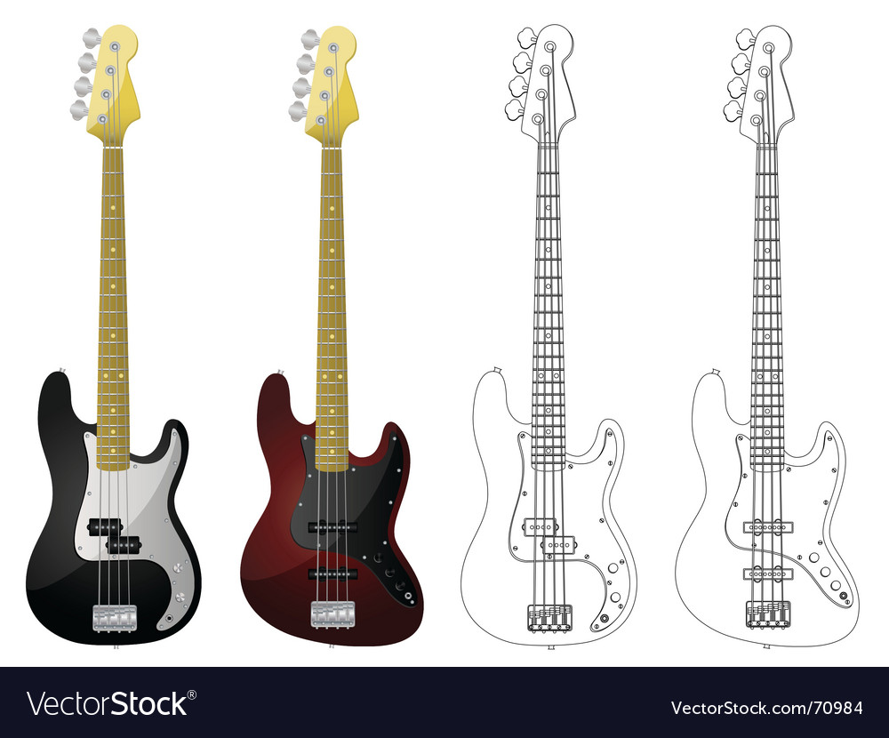 Bass guitars vector image