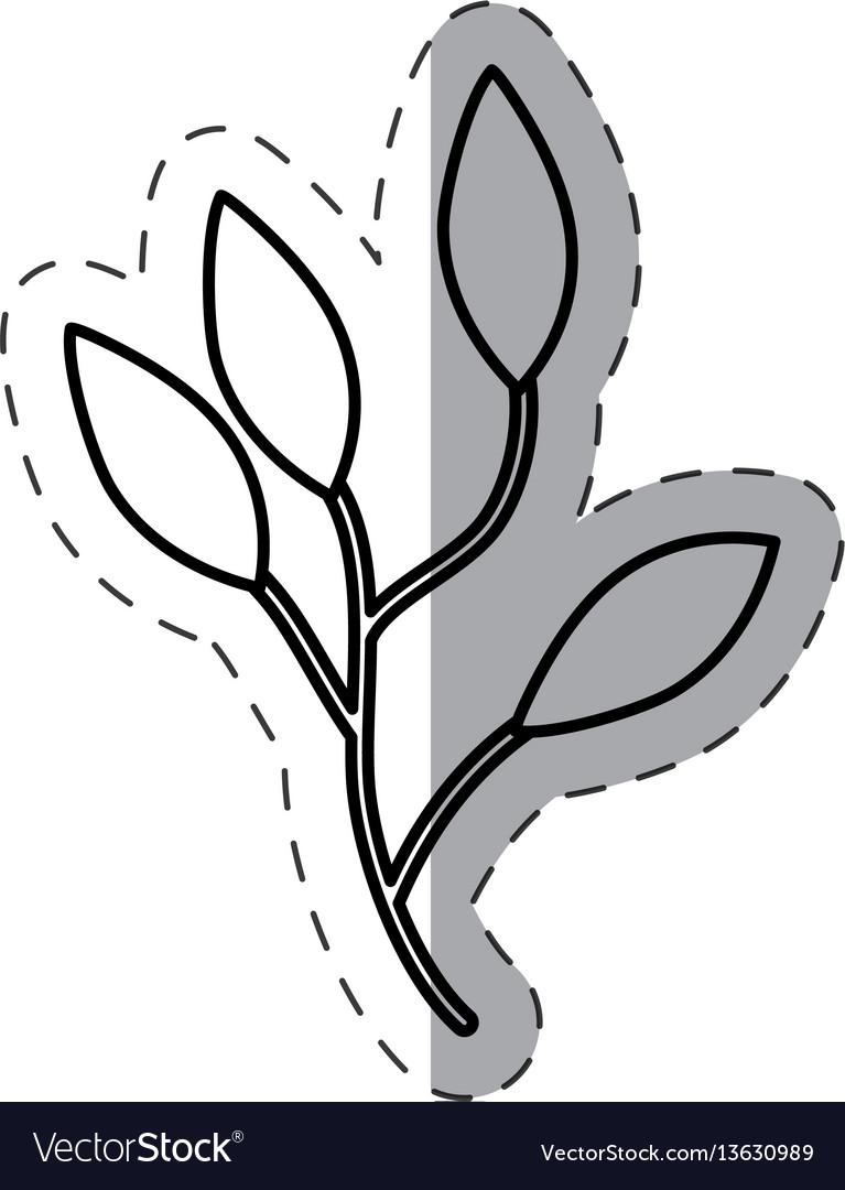 Leaves branch image cut line